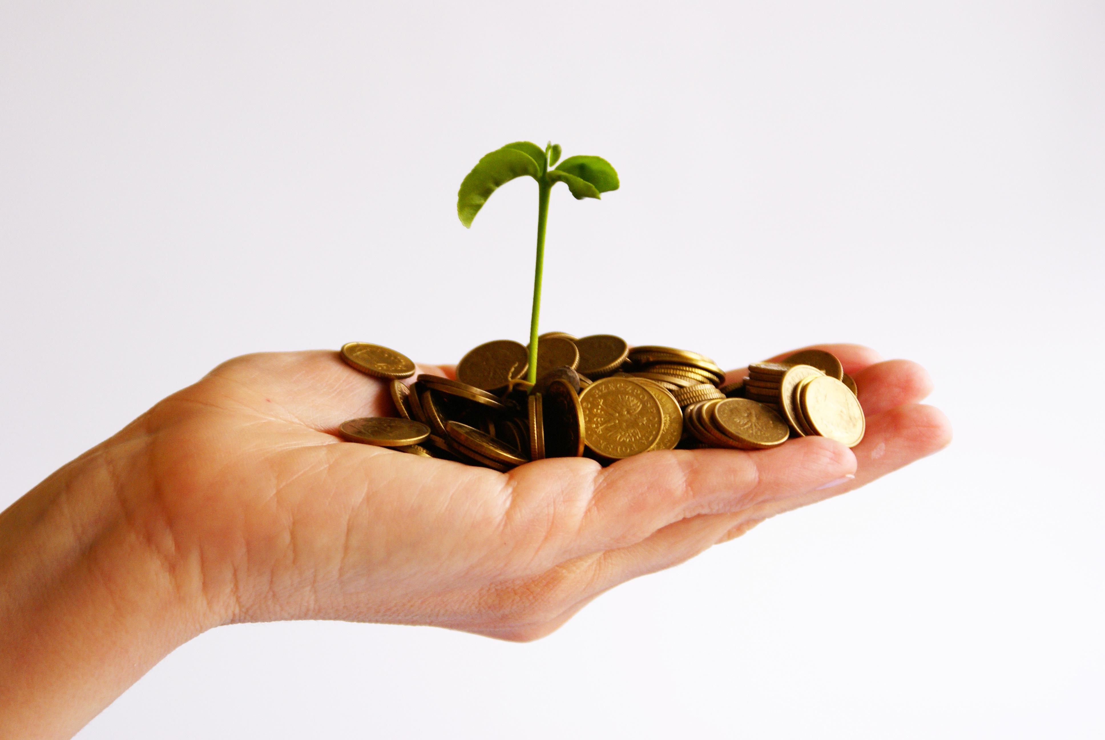 малый займ денег